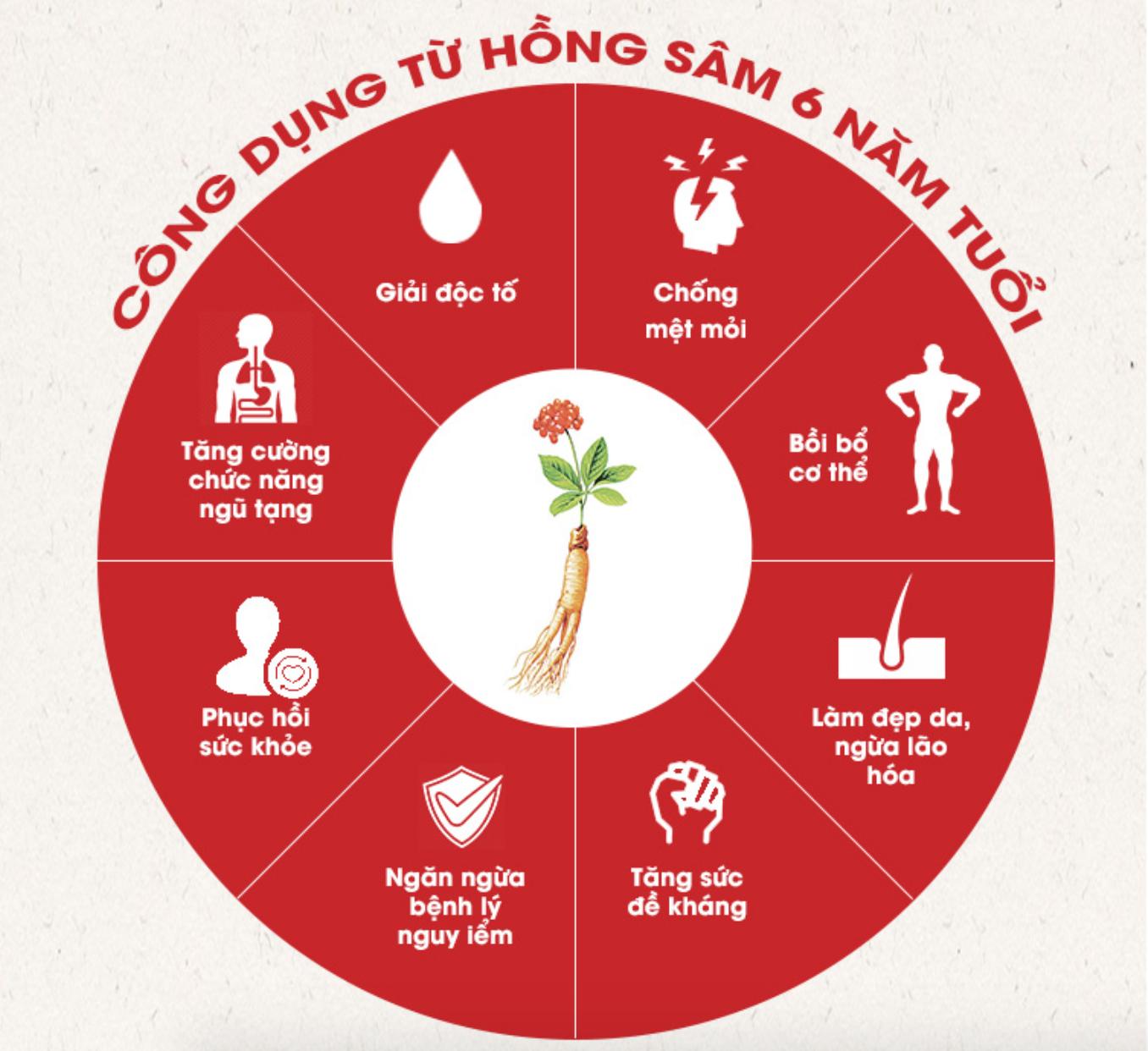 Cong-dung-Hong-Sam-Han-Quoc-KGC